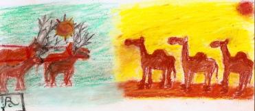Reindeer vs. Camels 12:26:18