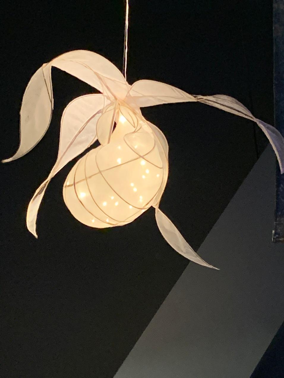 Lit Ladyslipper Lamp